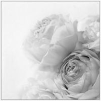 Marmont Hill Roses II 12-Inch Square Framed Wall Art