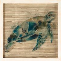 """Seagrass Turtle"" Shadowbox Wall Art"