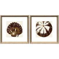 """Stylecraft """"Shells Blockprint"""" 2-Piece Framed Print Wall Art Set in Brown"""