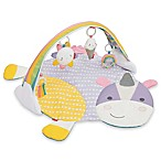 SKIP*HOP® Unicorn Activity Gym