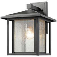 Filament Design Diana 1-Light Outdoor Wall Fixture in Black