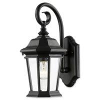 Filament Design Melany 1-Light 15.75-Inch Outdoor Wall Lantern in Black
