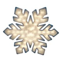 Northlight 20-Inch Lighted Window Snowflake