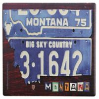 Thirstystone® Dolomite Montana License Plate State Single Coaster