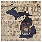 Thirstystone® Dolomite State Michigan Single Coaster