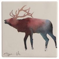 Thirstystone® Elks Club Single Dolomite Coaster