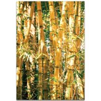 Metal Art Studio Bamboo Gold 32-Inch x 22-Inch Metal Wall Art
