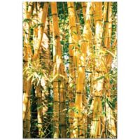 Metal Art Studio Bamboo Gold 32-Inch x 22-Inch Plexiglas Wall Art