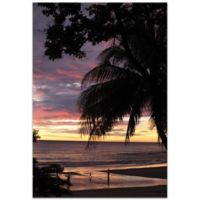 Metal Art Studio Coastal Sunset 22-Inch x 32-Inch Plexiglass Wall Art