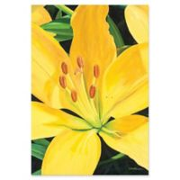 Metal Art Studio Heart of a Yellow Lily 22-Inch x 32-Inch Metal Wall Art