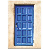 Metal Art Studio Blue Door 22-Inch x 32-Inch Plexiglas Wall Art