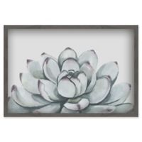 Marmont Hill Succulent 60-Inch x 40-Inch Shadow Box Wall Art