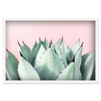 Marmont Hill Sweet Succulents 30-Inch x 20-Inch Framed Wall Art
