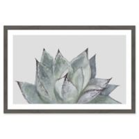 Marmont Hill Succulent Leaves 36-Inch x 24-Inch Framed Wall Art
