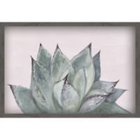 Marmont Hill Agave Profile III 12-Inch x 18-Inch Shadow Box Wall Art in Black