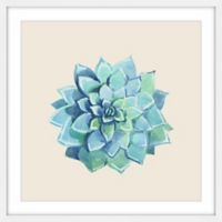 Marmont Hill Echeveria Imbricata II 48-Inch Square Framed Wall Art