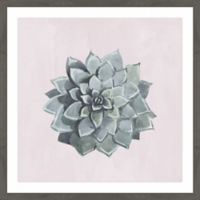 Marmont Hill Flower Top View 40-Inch Square Framed Wall Art