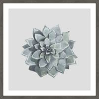 Marmont Hill Flower Top View II 40-Inch Square Framed Wall Art