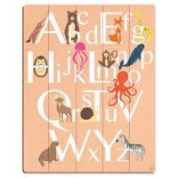 Astra Art Alphabet Animals 16-Inch x 20-Inch Wood Wall Art in Peach
