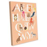 Astra Art Alphabet Animals 20-Inch x 24-Inch Canvas Wall Art in Peach