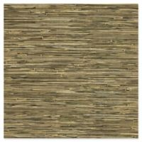 Liu Vinyl Grasscloth Wallpaper in Sage