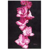 Metal Art Studio Bright Pink Glads 22-Inch x 32-Inch Metal Wall Art