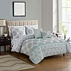 Meridian 9-Piece Queen Comforter Set in Mint