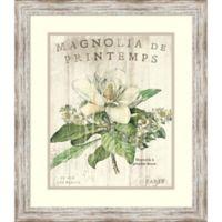 Amanti Magnolia de Printemps 19.5-Inch x 22.5-Inch Framed Wall Art