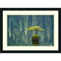 Amanti Art Fairy Lake Bonsai 31-Inch x 23-Inch Framed Wall Art