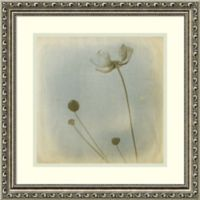 Amanti Art Faded Away 19-Inch Square Framed Wall Art
