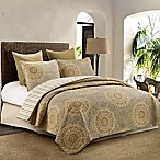 Federica King Quilt Set in Green/Yellow