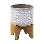 Zuo® Bohemian Small Planter with Wood Stand in Grey