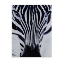Southern Enterprises Zebra 24-Inch x 32-Inch Glass Wall Art