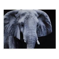 Southern Enterprises Elephant 24-Inch x 32-Inch Glass Wall Art