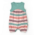 Finn by Finn + Emma® Size 0-3M Organic Cotton Striped Romper