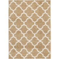 "Home Dynamix Synergy by Nicole Miller Trellis 3'3"" x 4'3"" Accent Rug in Beige/White"