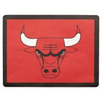 NBA Chicago Bulls Outdoor Curb Address Logo Decal