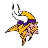 NFL Minnesota Vikings Small Decal