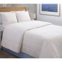 Climate Cool Queen Blanket in White