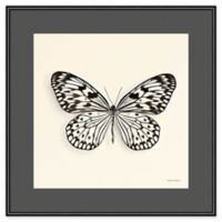 Amanti Art Butterfly V Crop 16-Inch Square Framed Wall Art
