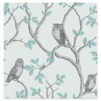 Fine Decor Linden Owl Wallpaper in Teal