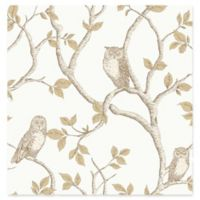 Fine Decor Linden Owl Wallpaper in Natural