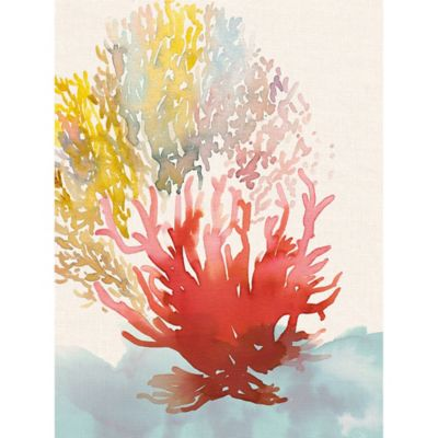 Portfolio Arts Group Coral Spray II 30 Inch X 40 Inch Canvas Wall Art