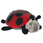 Twilight Ladybug™ by cloud b in Red/Black
