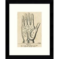 Amanti Art Palmistry Diamgram 9-Inch x 11-Inch Framed Wall Art
