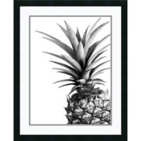 Amanti Art Pineapple 25-Inch x 31-Inch Framed Wall Art