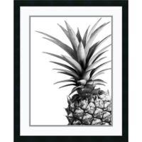 Amanti Art Pineapple 25-Inch x 31-Inch Framed Wall Art