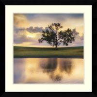 Amanti Art Summer Evening 33-Inch Square Framed Wall Art