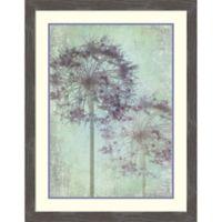 Amanti Art Alium Globe Master 27.75-Inch x 19.75-Inch Framed Print Wall Art