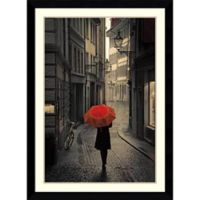 Amanti Art Red Rain 31-Inch x 43-Inch Framed Wall Art